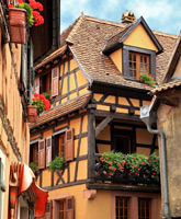 Alsace and Black Forest Biking Trips
